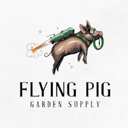 Logo design for FlyingPig by Mad pepper