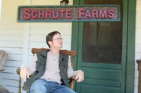 Dwight Schrute at Schrute Farms