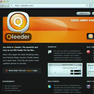 Winning Web page design entry for Qfeeder