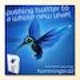 Runner up Stationery entry for Hummingbird