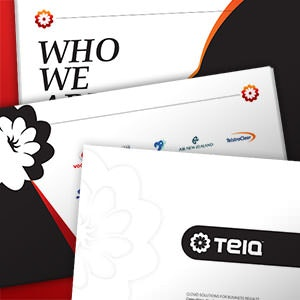 Brochure for TEIQ by meeva