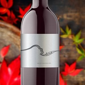 Logo design for B Wise Vineyards (www.BWiseVineyards.com) TRIOS wine by adamlbar