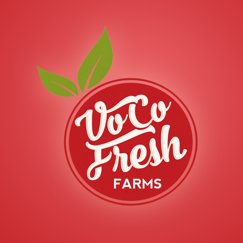 Logo & brand identity pack for Vo Co Fresh by Project 4