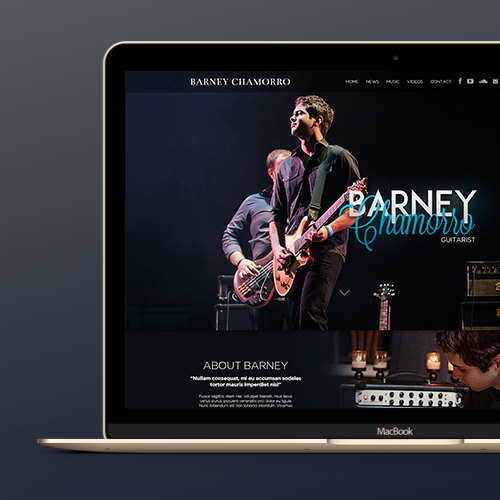 Web page design for Barney Chamorro by Hitron