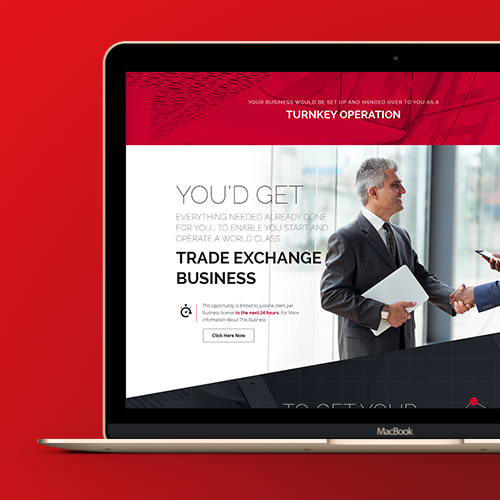 Design per sito web per World Trade Exchange di galinka