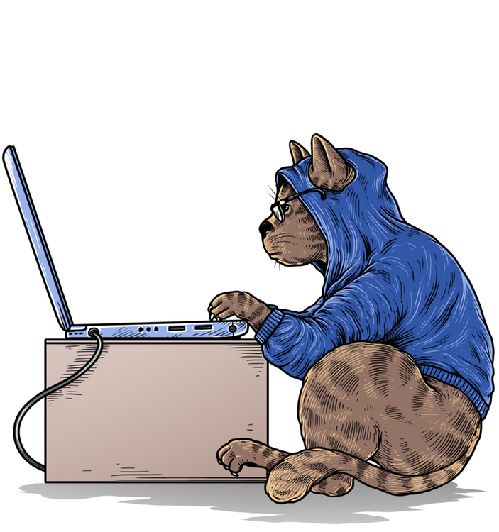Kelly the cat at a laptop