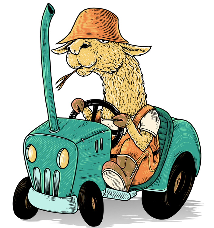 Larry the llama farmer on his tractor