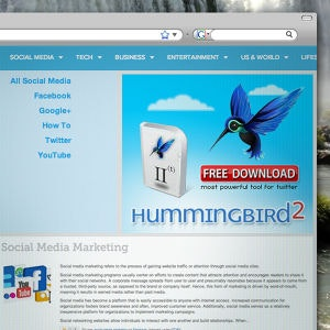 Winning Banner ad entry for Hummingbird