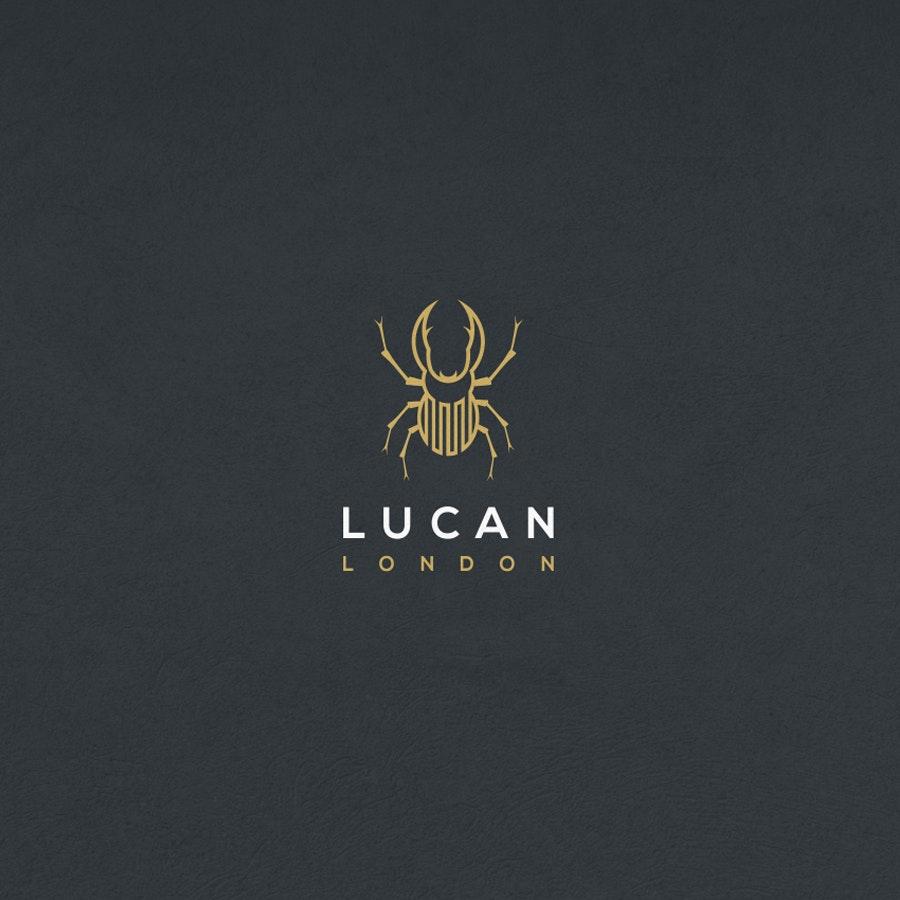 Lucan fashion logo