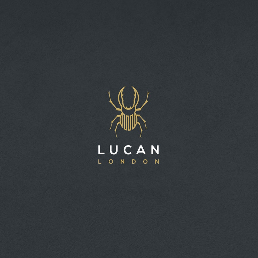 Lucan fashion logo
