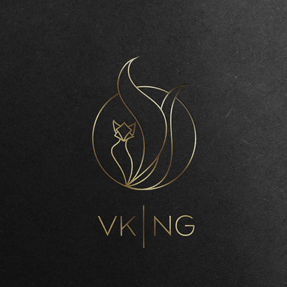 Vk Ng fashion logo