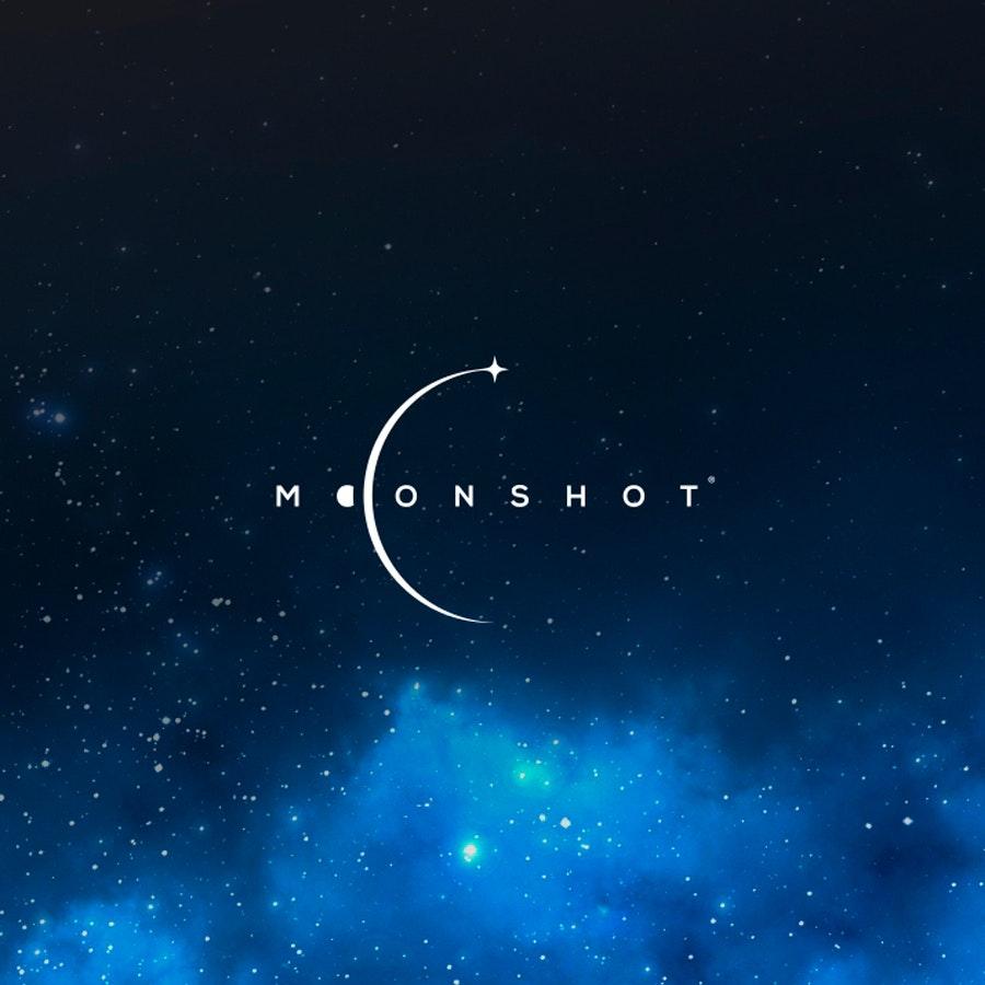 Moonshot business logo design