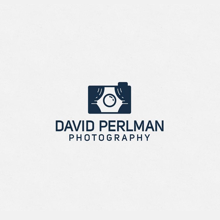 David Perlman photography logo