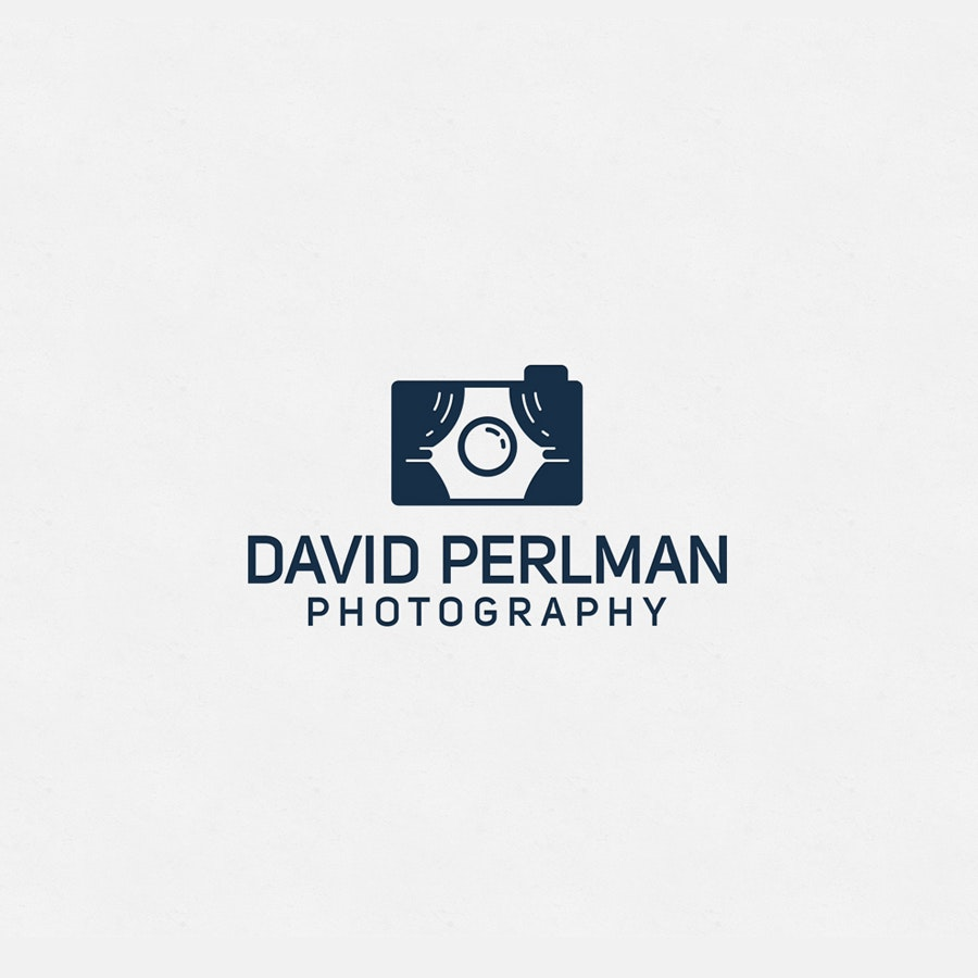 David Perlman photography logo