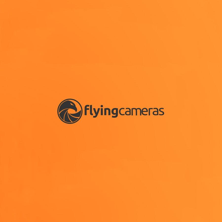 Flying Cameras photography logo design