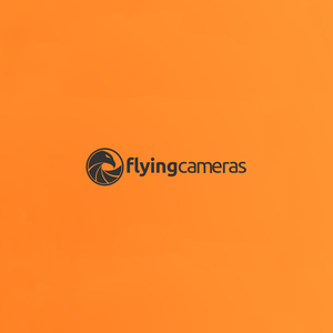 Flying Cameras photography logo design
